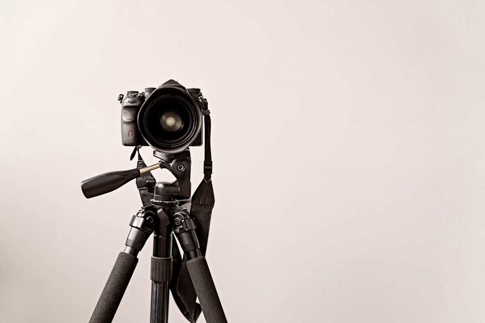 trusted-photographer-status